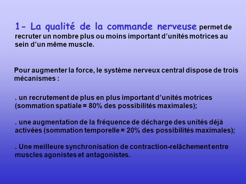 1- La qualité de la commande nerveuse permet de