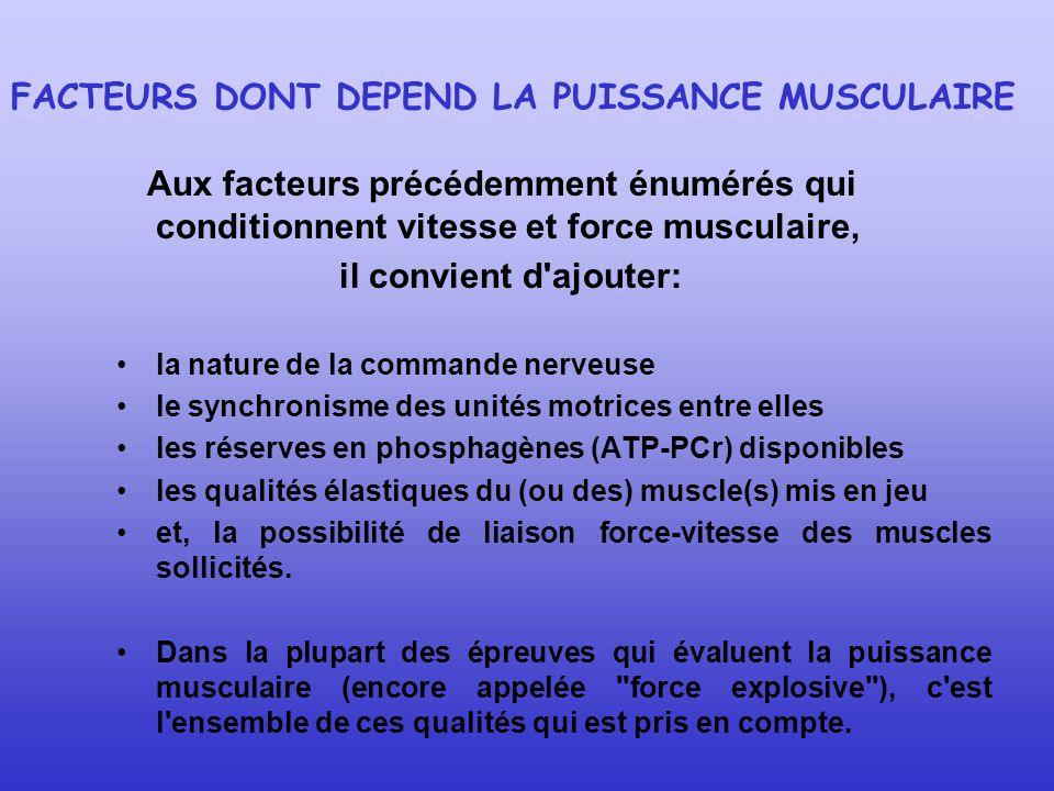 FACTEURS DONT DEPEND LA PUISSANCE MUSCULAIRE