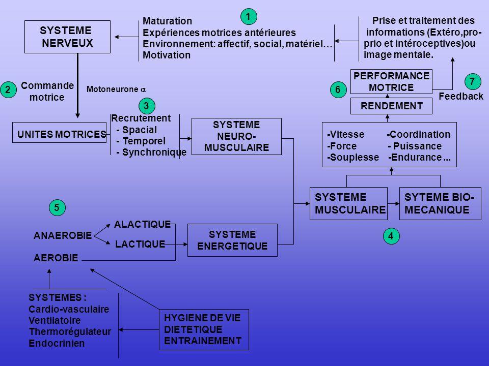 Prise et traitement des informations (Extéro,pro-