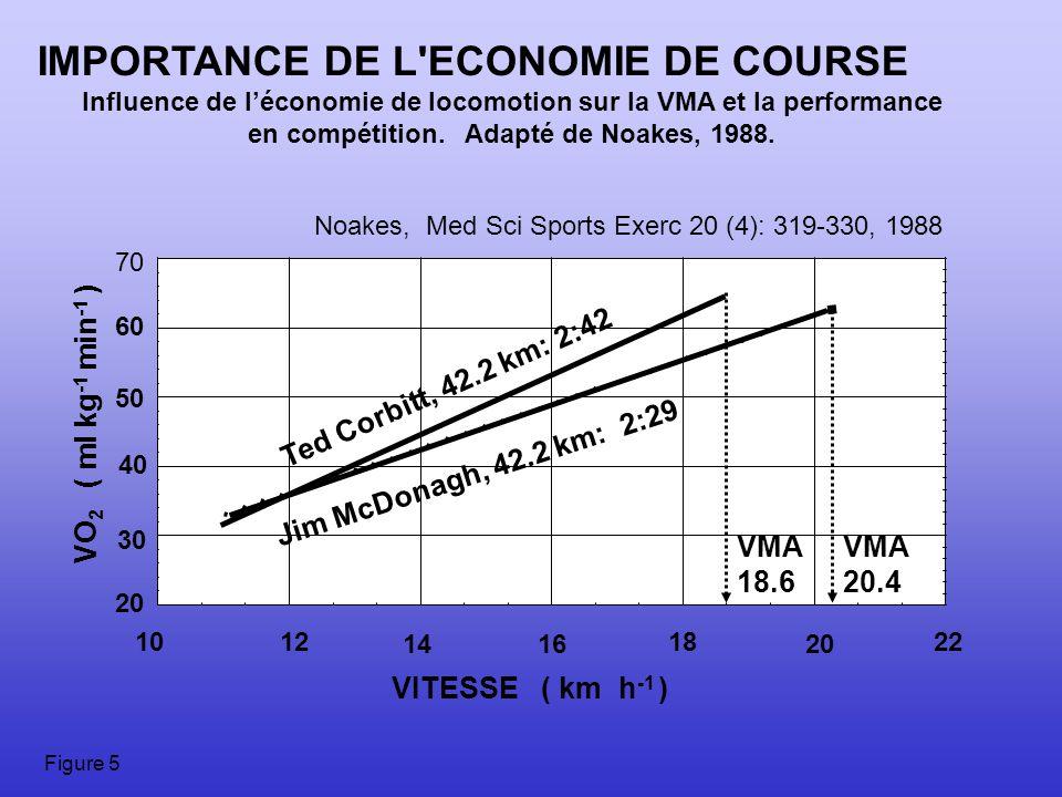 IMPORTANCE DE L ECONOMIE DE COURSE