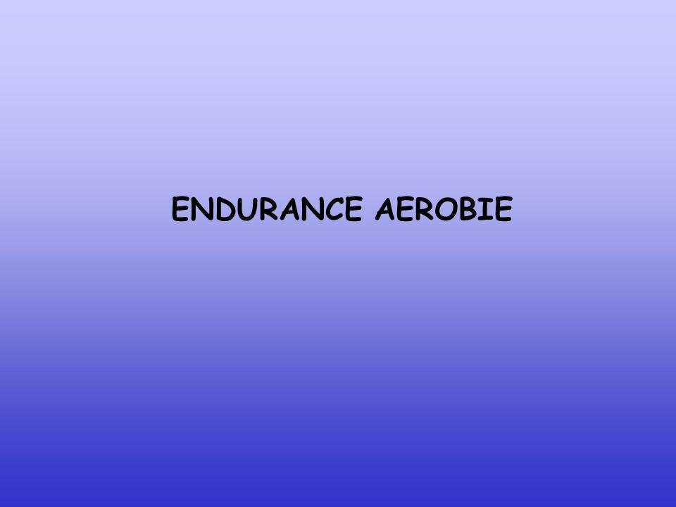 ENDURANCE AEROBIE