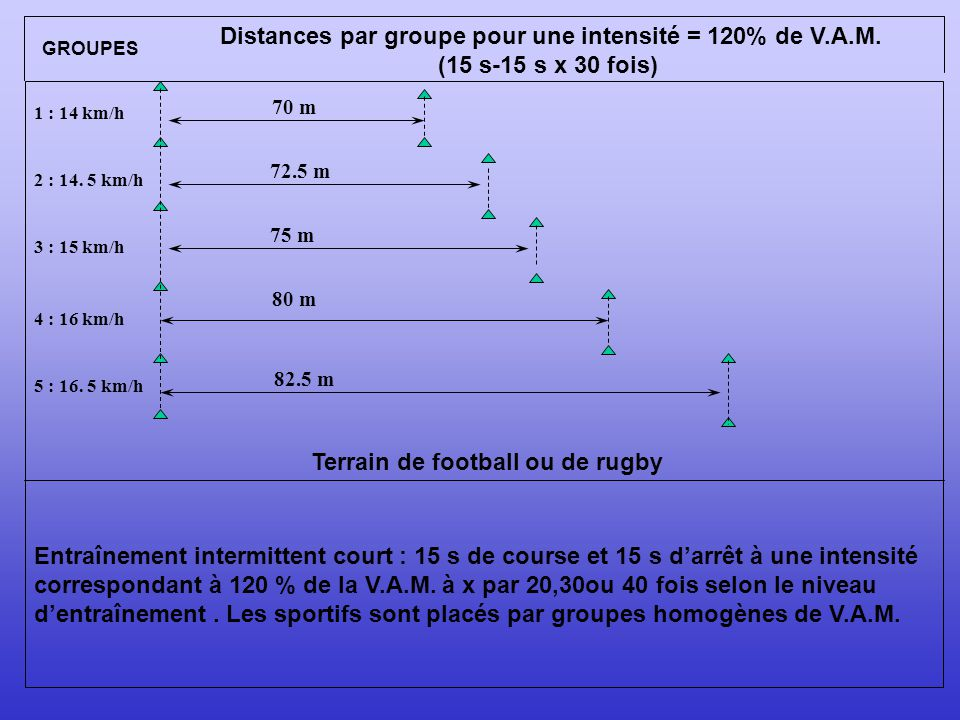 Terrain de football ou de rugby