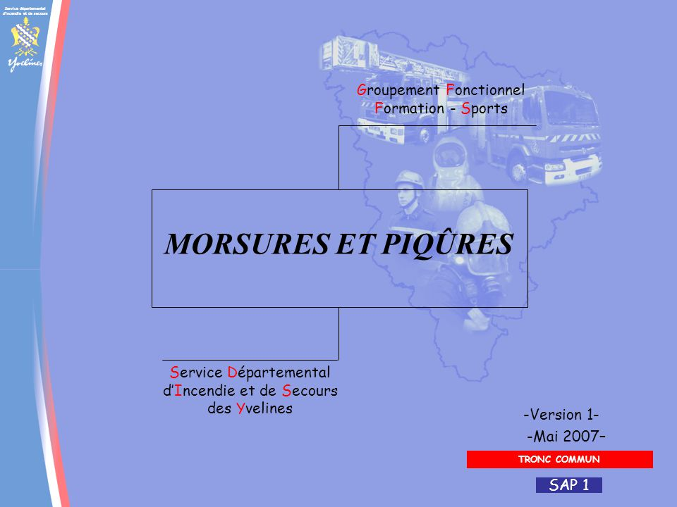 MORSURES ET PIQÛRES