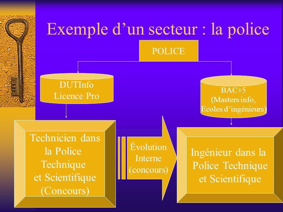 Exemple d'un secteur : la police