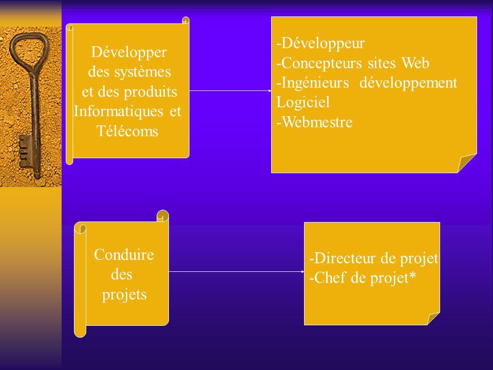 Développer des systèmes. et des produits. Informatiques et. Télécoms. -Développeur. -Concepteurs sites Web.