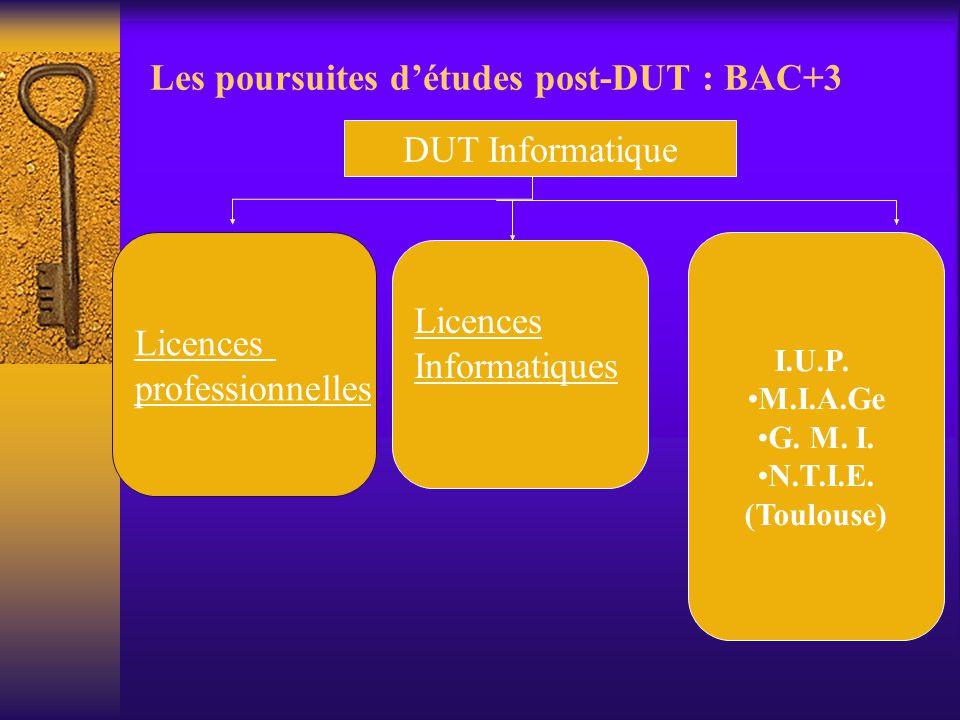 Les poursuites d'études post-DUT : BAC+3