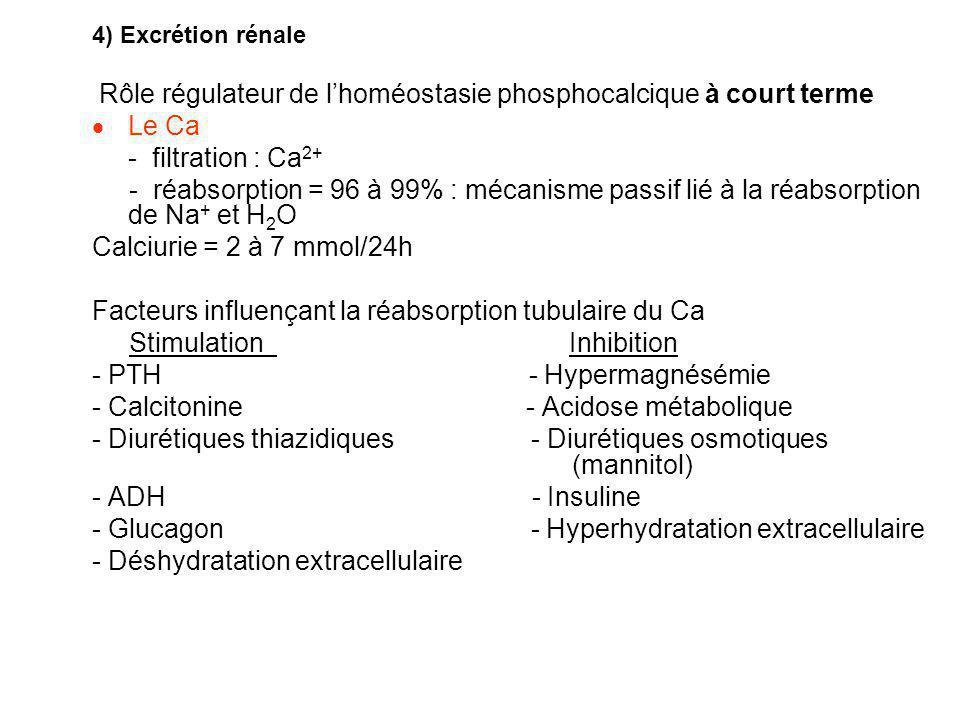 Rôle régulateur de l'homéostasie phosphocalcique à court terme Le Ca
