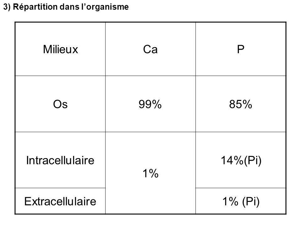 Milieux Ca P Os 99% 85% Intracellulaire 1% 14%(Pi) Extracellulaire