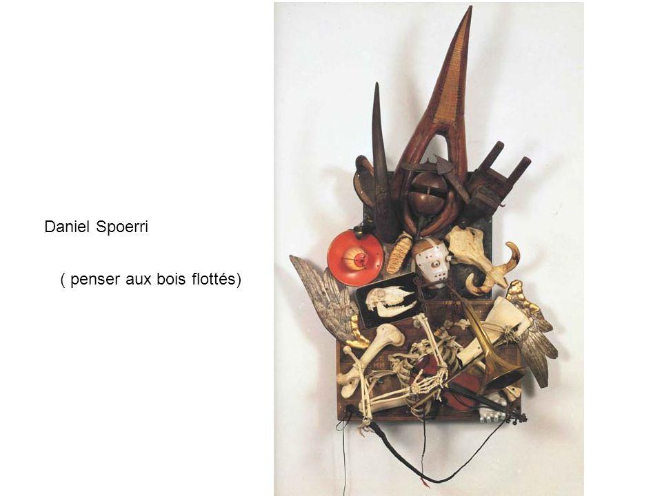 Daniel Spoerri ( penser aux bois flottés)
