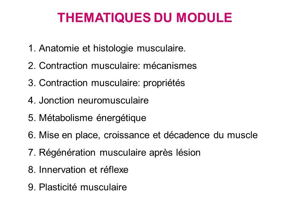 THEMATIQUES DU MODULE Anatomie et histologie musculaire.