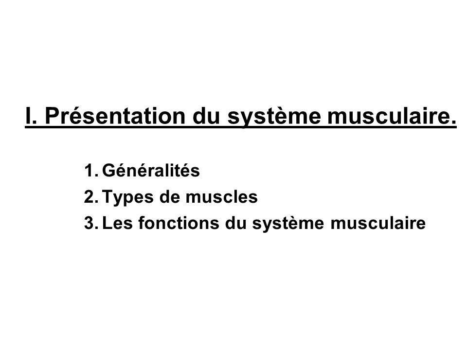 I. Présentation du système musculaire.