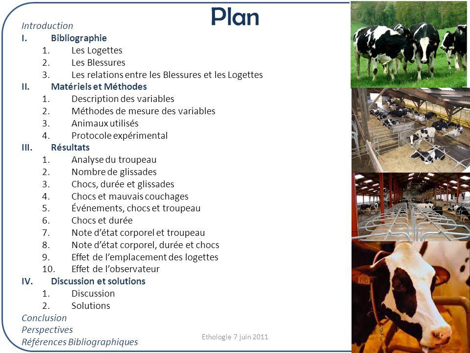 Plan Introduction Bibliographie Les Logettes Les Blessures