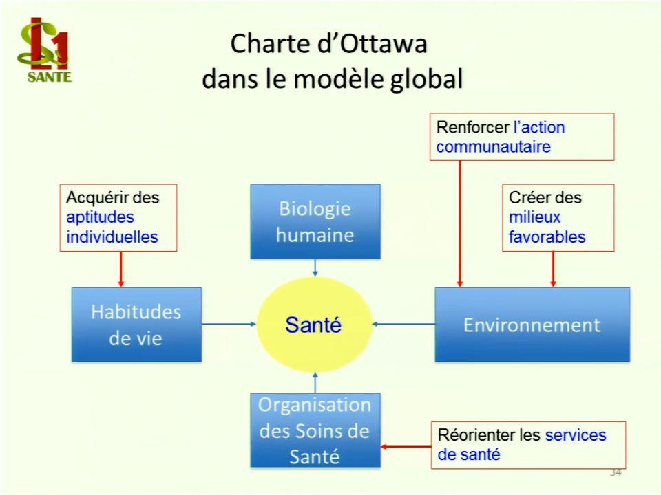 Charte d'Ottawa dans le modèle global