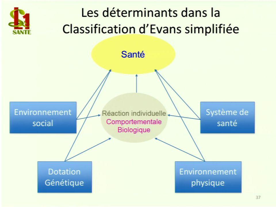 Les déterminants dans la Classification d'Evans simplifiée