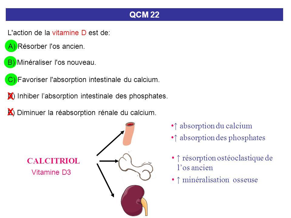X X QCM 22 ↑ absorption du calcium ↑ absorption des phosphates
