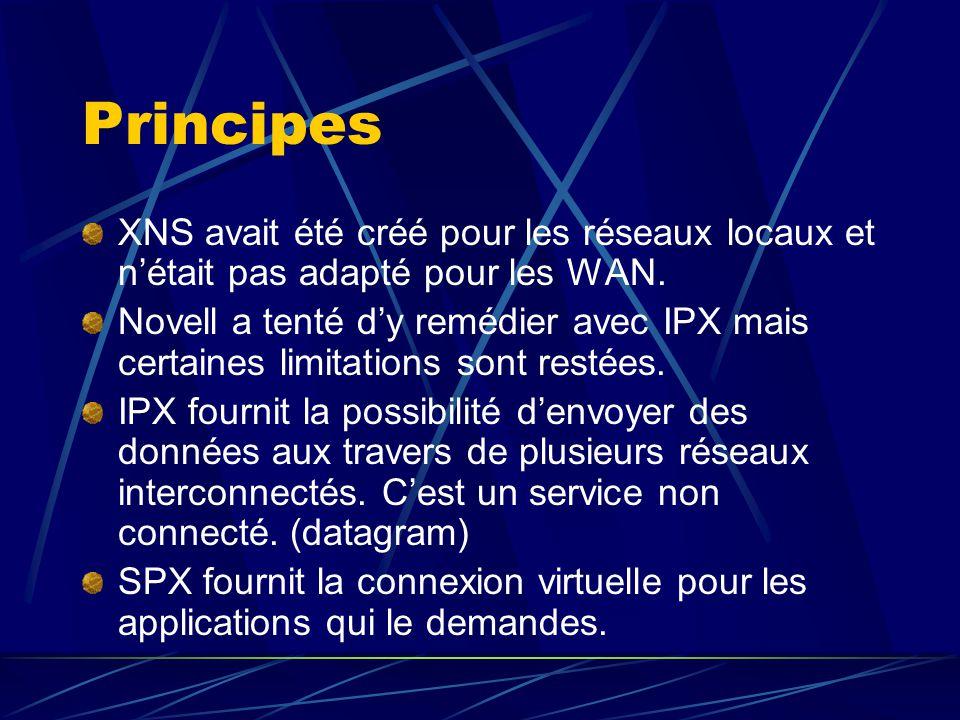 Principes XNS avait été créé pour les réseaux locaux et n'était pas adapté pour les WAN.