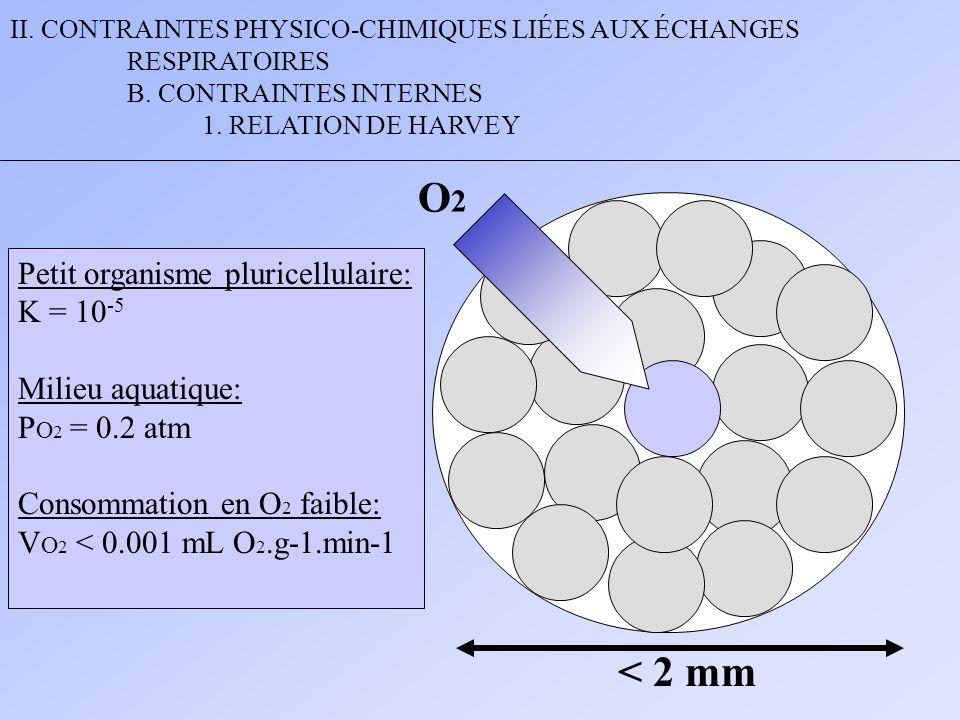 O2 < 2 mm Petit organisme pluricellulaire: K = 10-5
