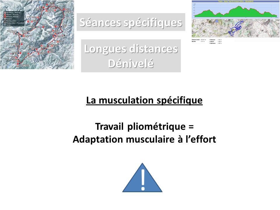 ! Séances spécifiques Longues distances Dénivelé