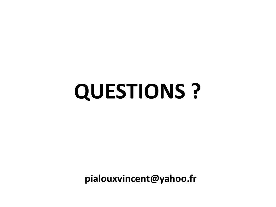 QUESTIONS pialouxvincent@yahoo.fr