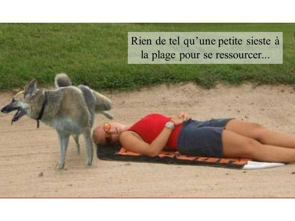 Rien de tel qu'une petite sieste à la plage pour se ressourcer...