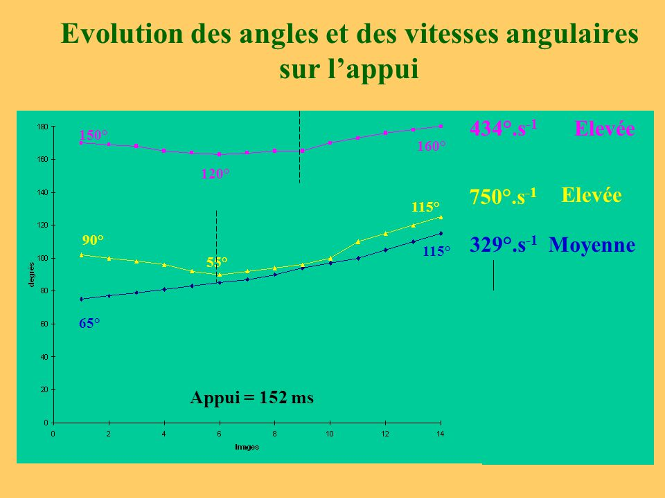 Evolution des angles et des vitesses angulaires sur l'appui