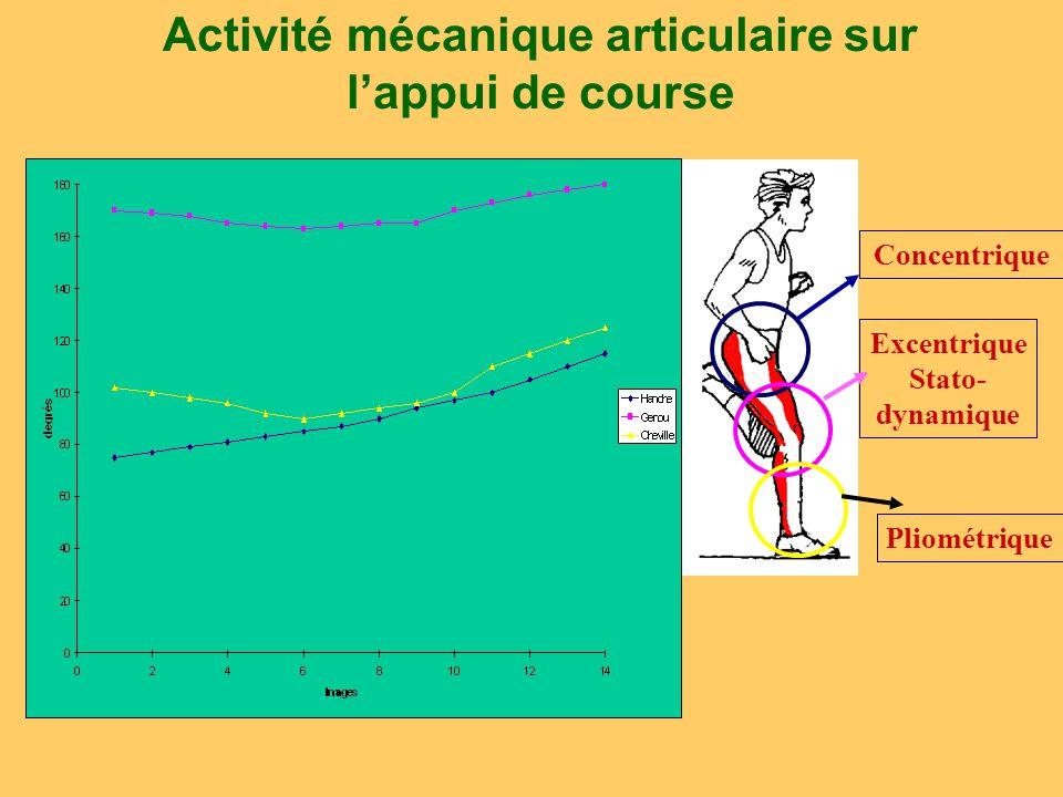 Activité mécanique articulaire sur l'appui de course