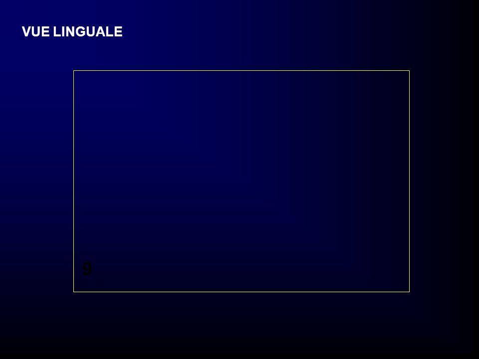 VUE LINGUALE 9