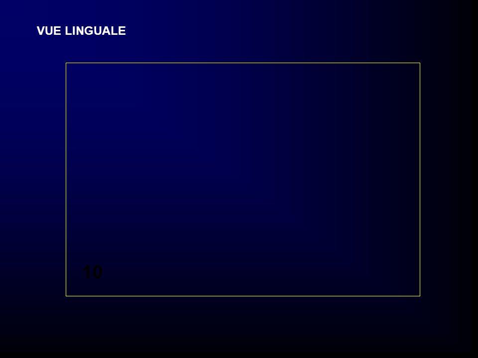VUE LINGUALE 10