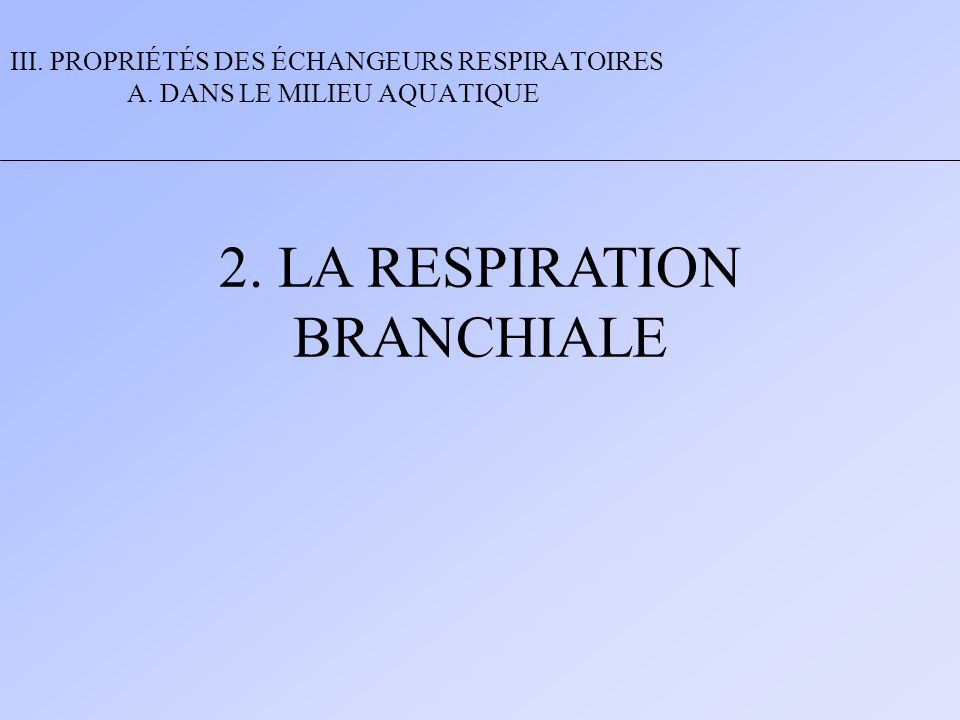 2. LA RESPIRATION BRANCHIALE