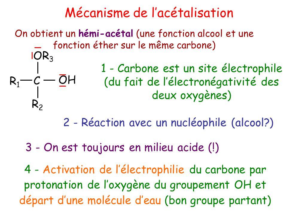 Mécanisme de l'acétalisation
