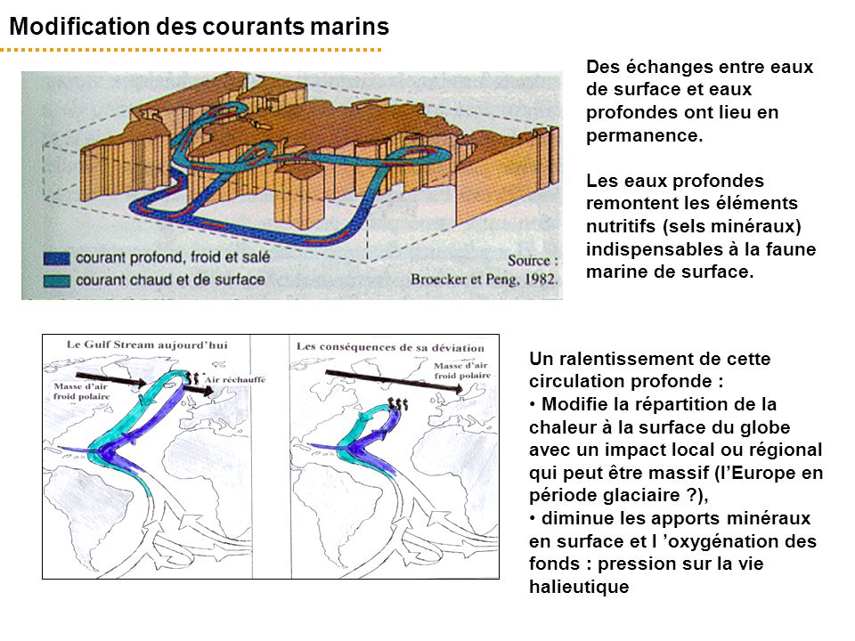 Modification des courants marins