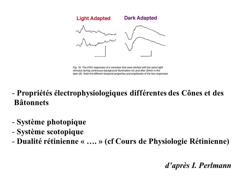 Propriétés électrophysiologiques différentes des Cônes et des