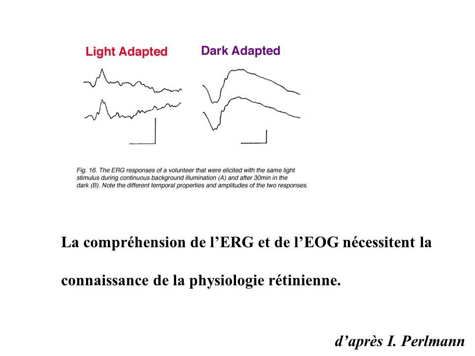La compréhension de l'ERG et de l'EOG nécessitent la