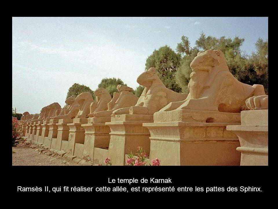 Le temple de Karnak Ramsès II, qui fit réaliser cette allée, est représenté entre les pattes des Sphinx.