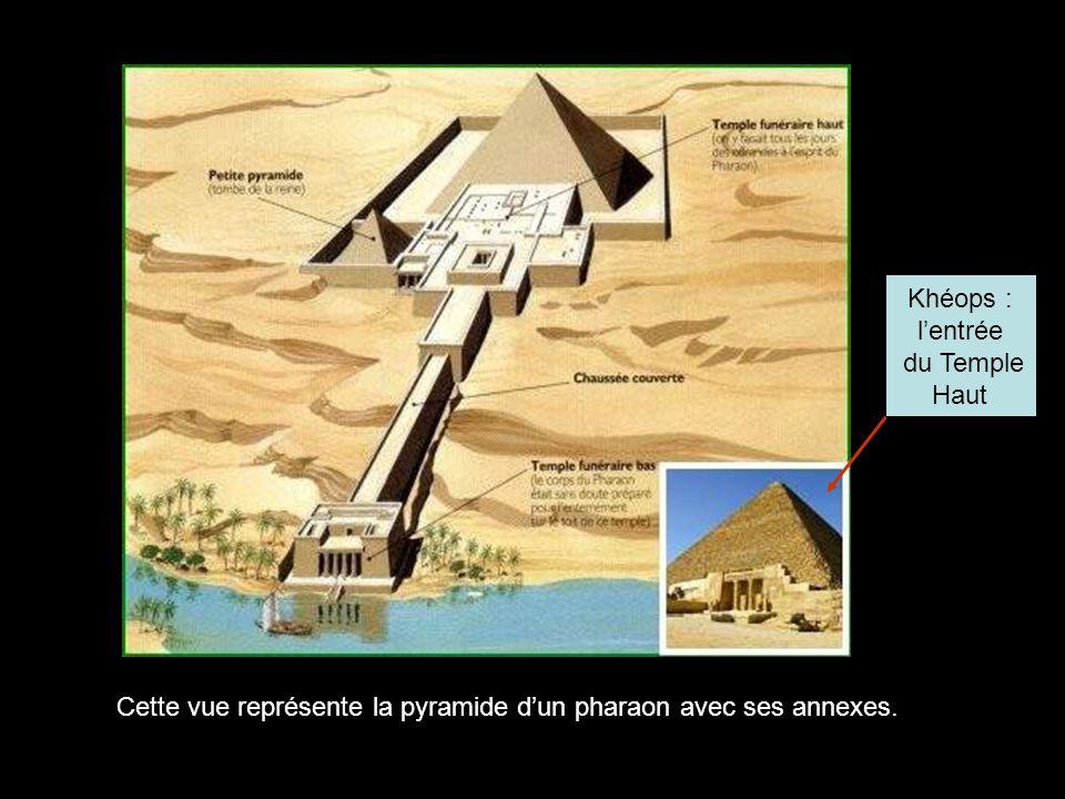 Cette vue représente la pyramide d'un pharaon avec ses annexes.