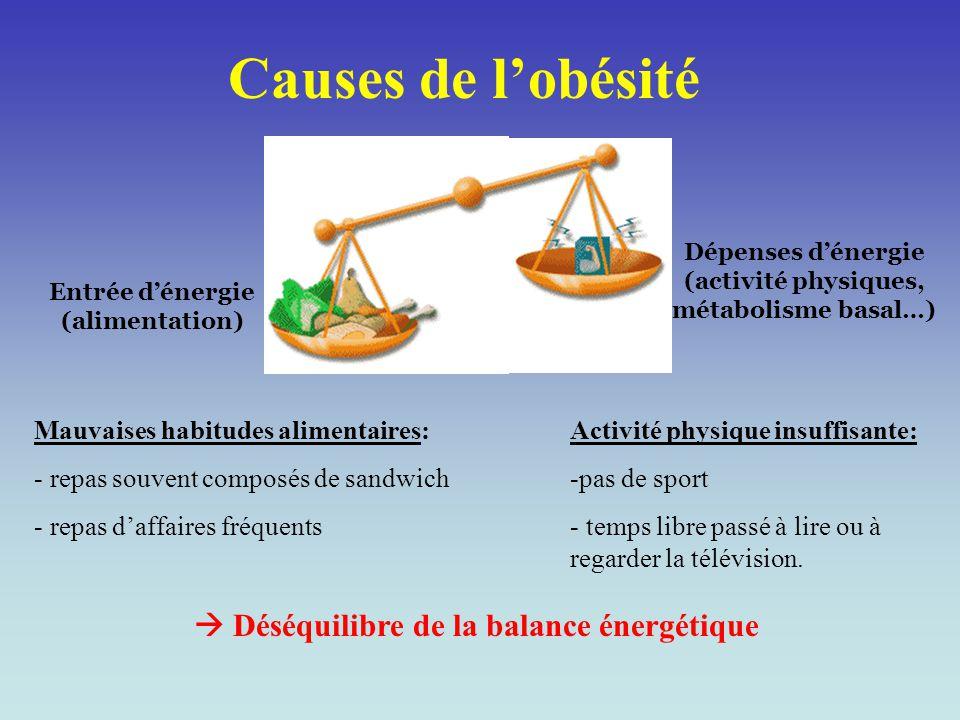 Causes de l'obésité  Déséquilibre de la balance énergétique