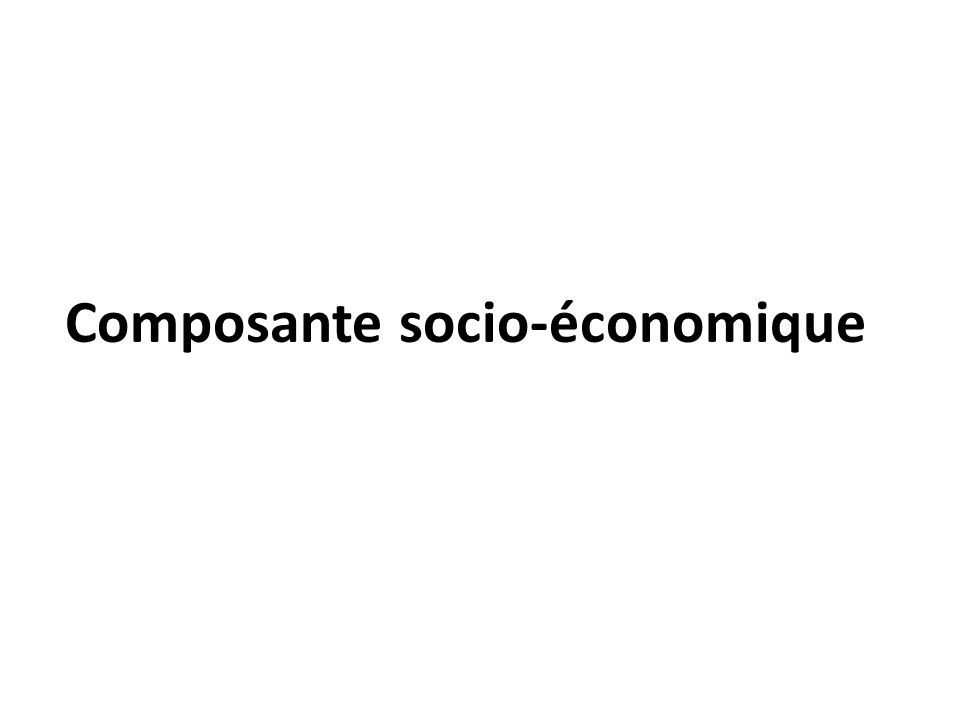 Composante socio-économique