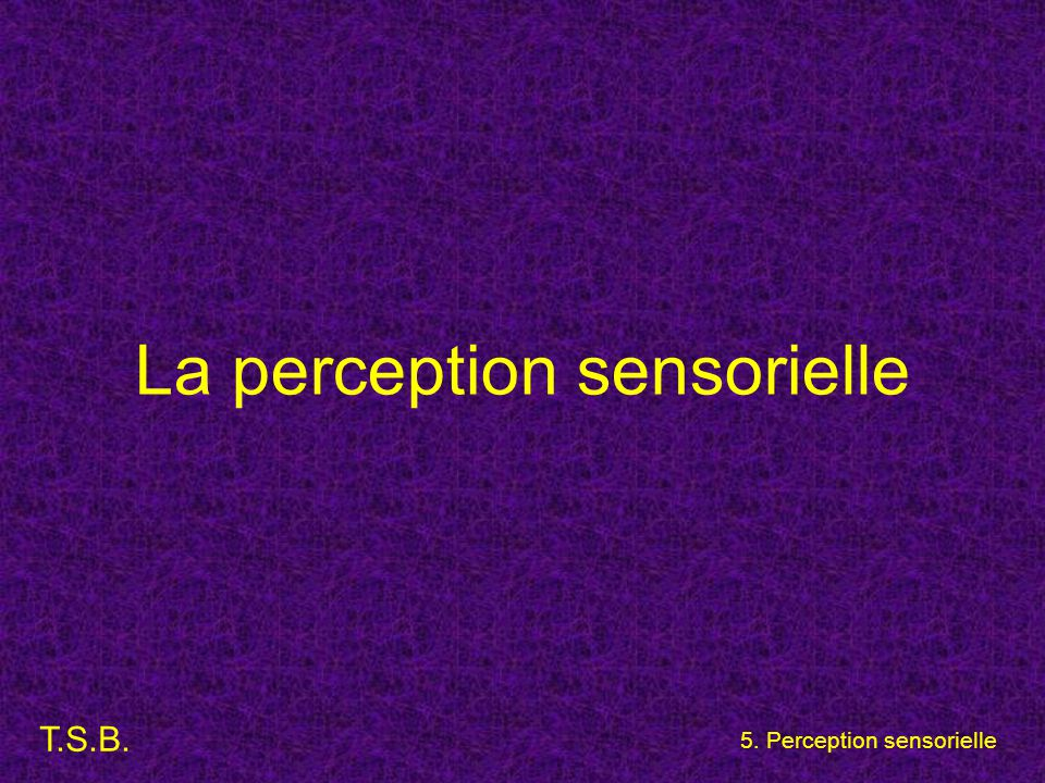 La perception sensorielle