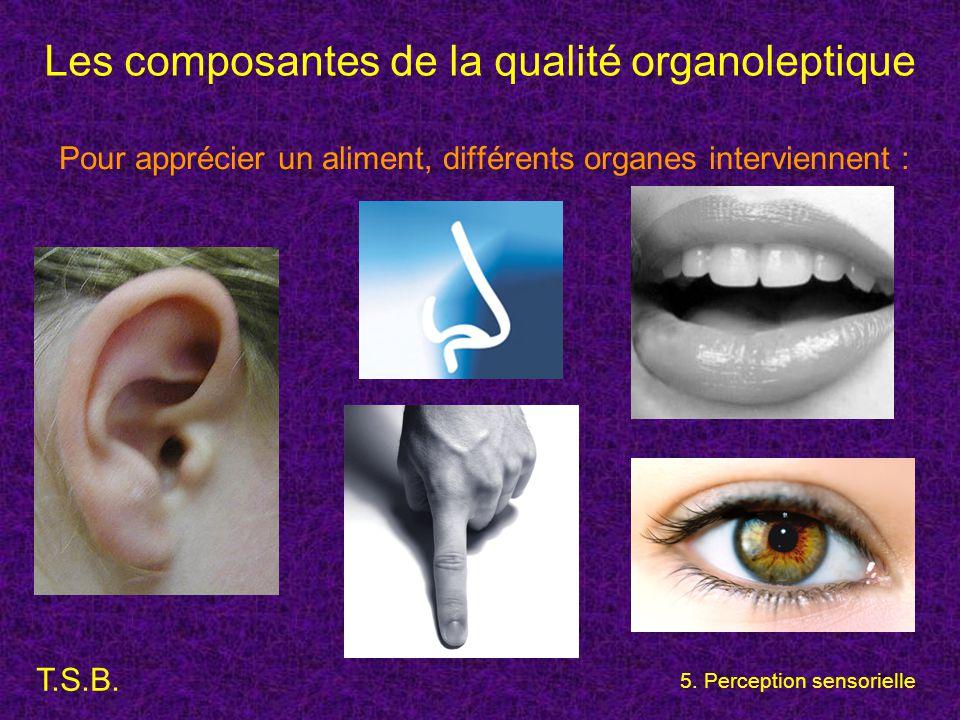 Les composantes de la qualité organoleptique