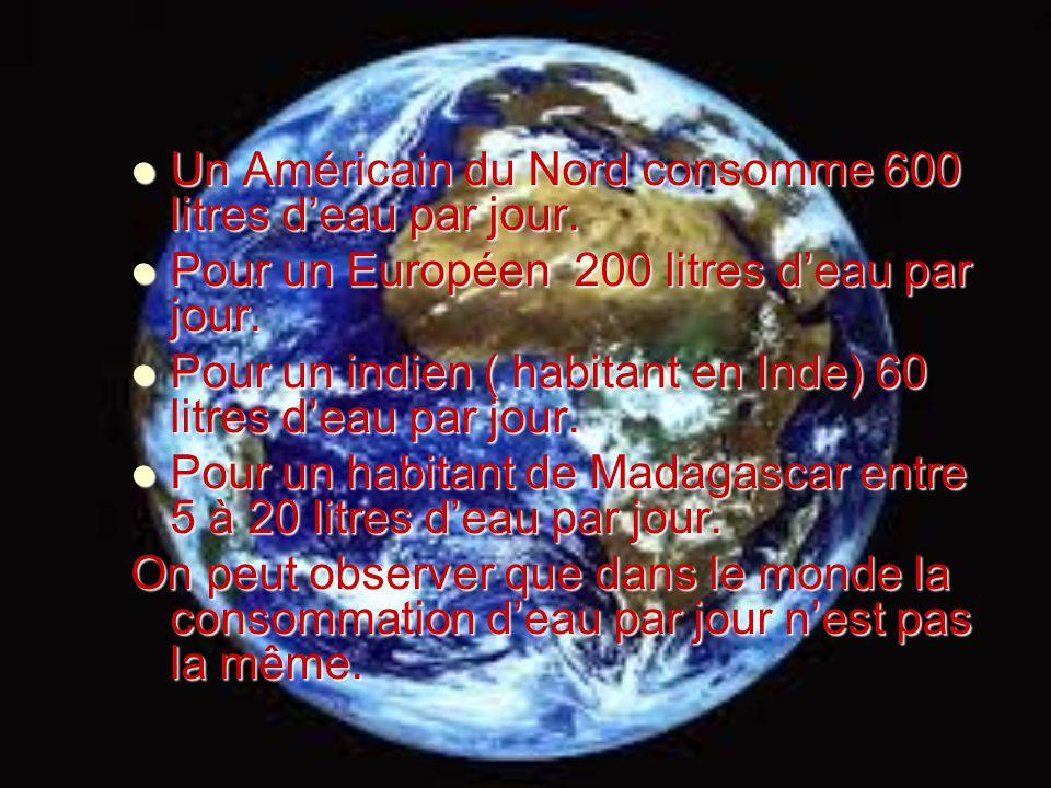 Un Américain du Nord consomme 600 litres d'eau par jour.