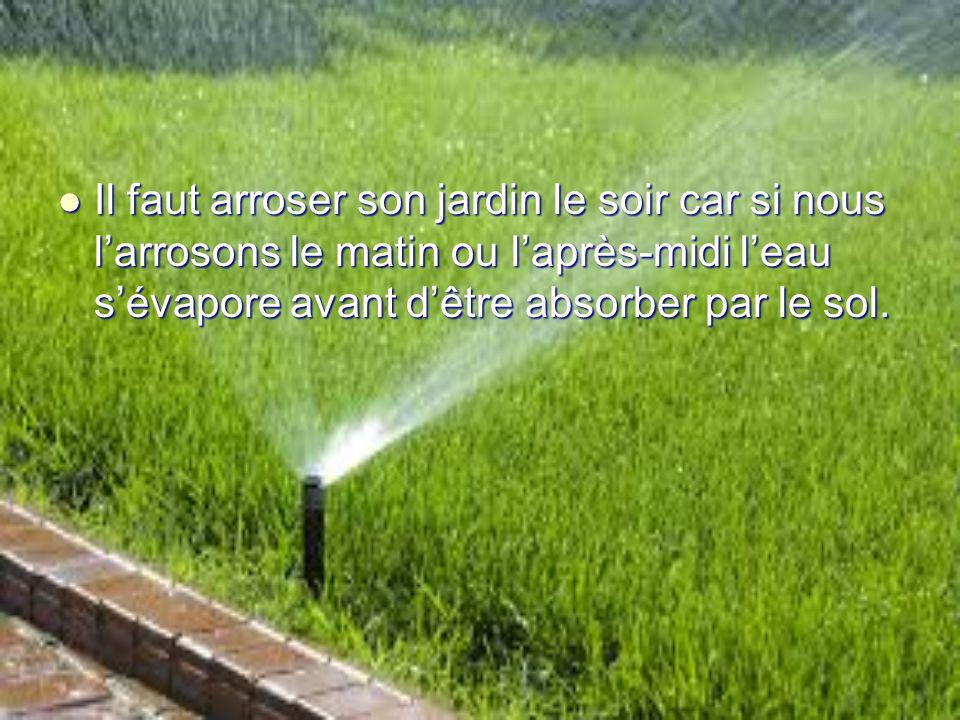 Il faut arroser son jardin le soir car si nous l'arrosons le matin ou l'après-midi l'eau s'évapore avant d'être absorber par le sol.