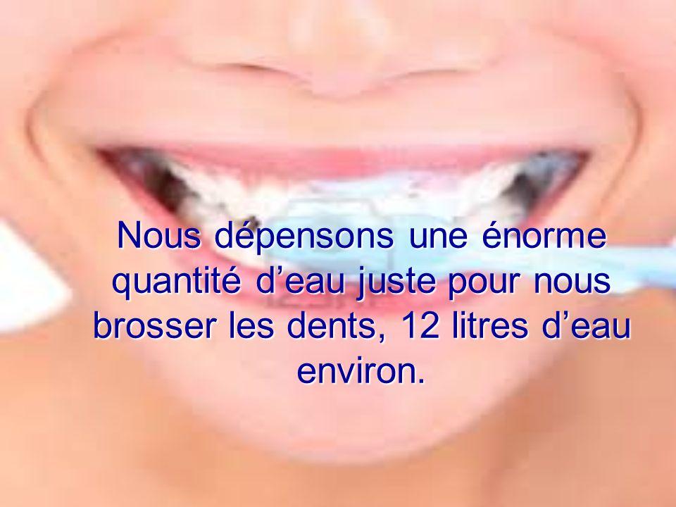 Nous dépensons une énorme quantité d'eau juste pour nous brosser les dents, 12 litres d'eau environ.