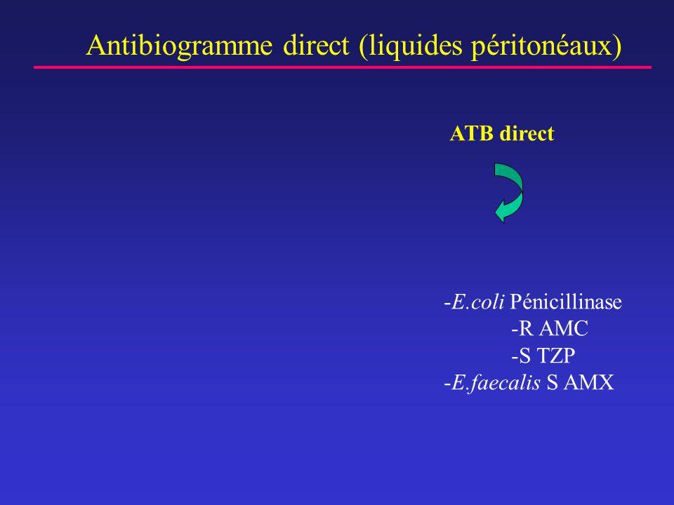 Antibiogramme direct (liquides péritonéaux)