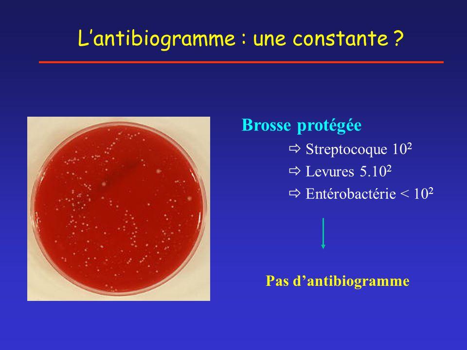 L'antibiogramme : une constante