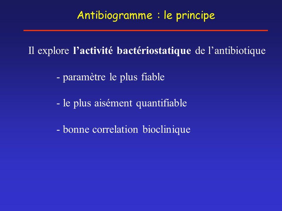 Antibiogramme : le principe