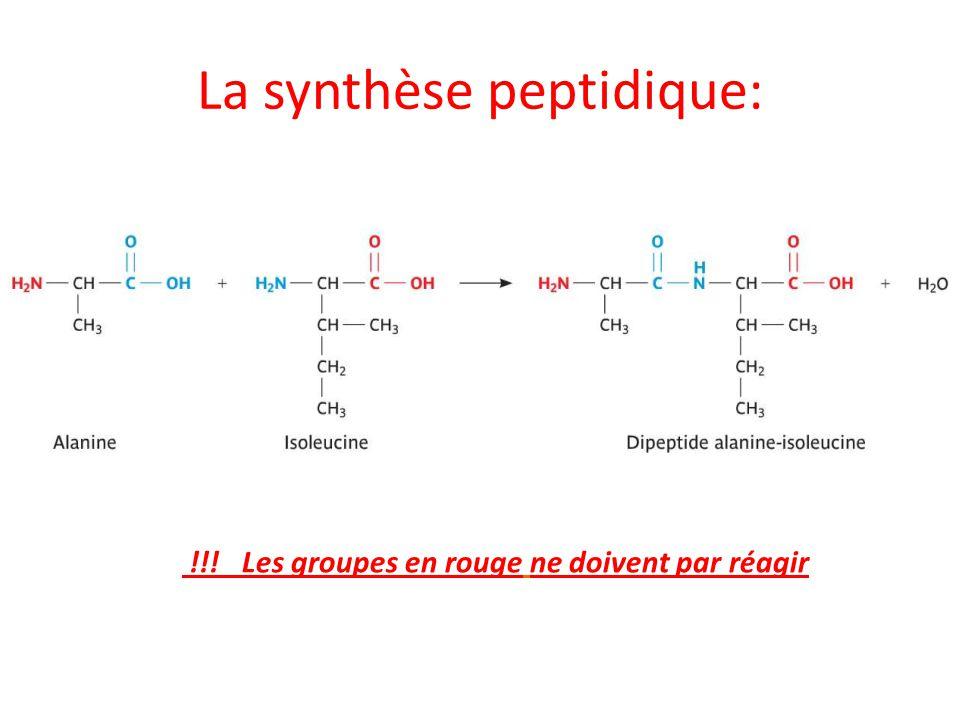 La synthèse peptidique: