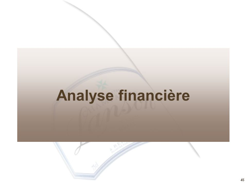 Analyse financière 45