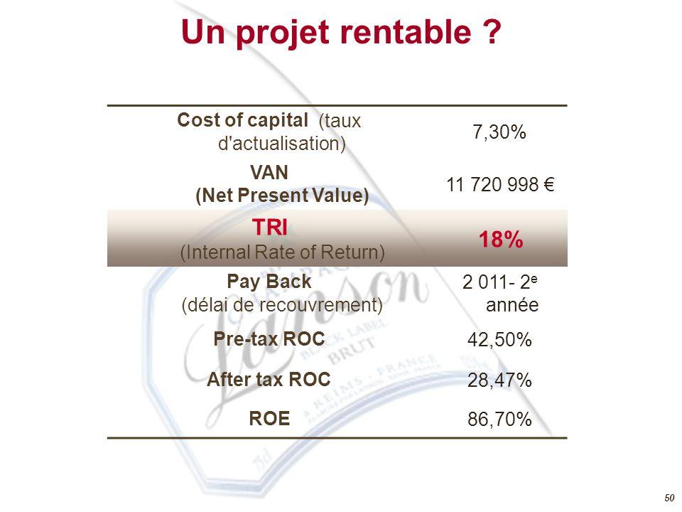 VAN (Net Present Value)