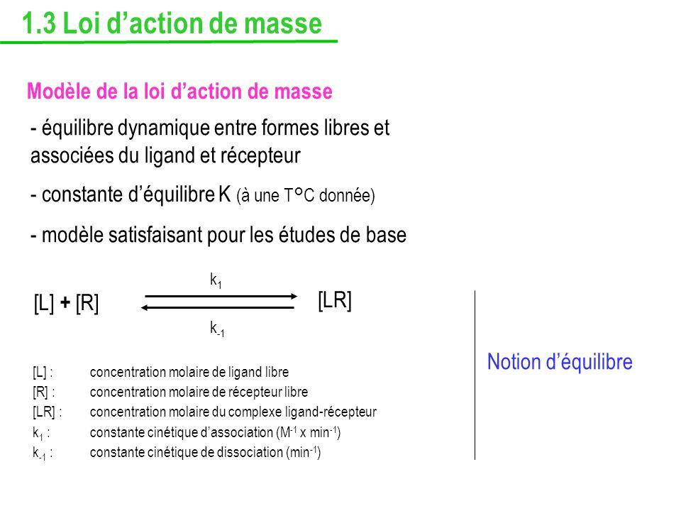 1.3 Loi d'action de masse Modèle de la loi d'action de masse