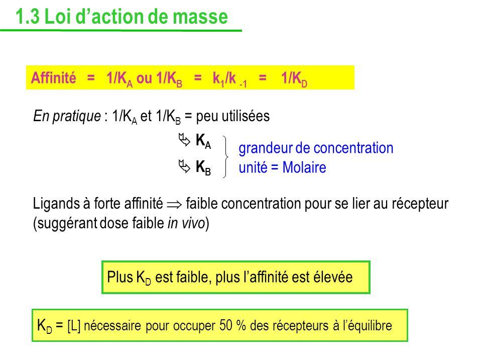 1.3 Loi d'action de masse Affinité = 1/KA ou 1/KB = k1/k -1 = 1/KD